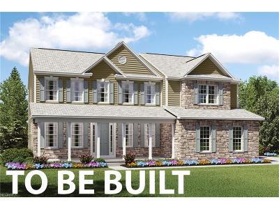 Avon, Avon Lake Single Family Home For Sale: 2352 Norton Pl