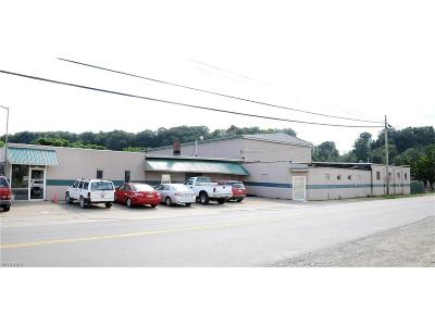 Guernsey County Commercial For Sale: 128 Steubenville Ave