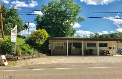 Guernsey County Commercial For Sale: 14052 East Pike Rd