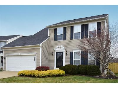 North Ridgeville Single Family Home For Sale: 37666 Stoney Lake Dr