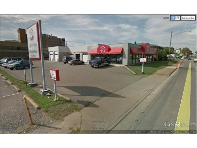 Zanesville Commercial For Sale: 1257 Maple Ave