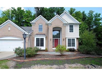 Twinsburg Single Family Home For Sale: 2938 Granby Cir