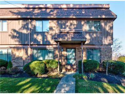 Mentor Condo/Townhouse For Sale: 7050 Chillicothe Rd #D-1