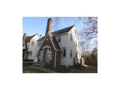 Youngstown Single Family Home For Sale: 4005 Howard St