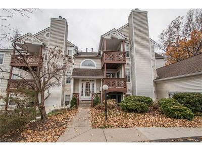 Westlake Condo/Townhouse For Sale: 1304 Cedarwood Dr #D2