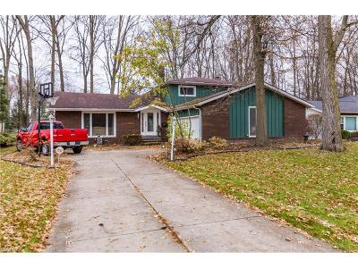 North Olmsted Single Family Home For Sale: 29583 Bretton Ridge Dr