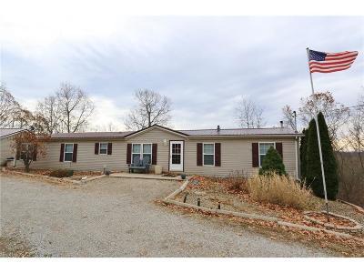 Single Family Home For Sale: 1670 Fattler Ridge Rd