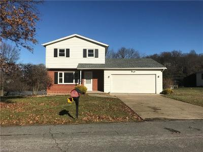 Guernsey County Single Family Home For Sale: 1 Orchard Ln