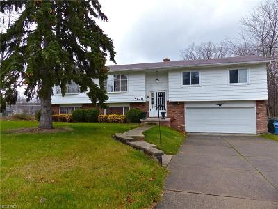 Mentor-On-The-Lake Single Family Home For Sale: 7940 Lakeshore Blvd
