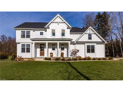 Chagrin Falls Single Family Home For Sale: 18110 Alex Way
