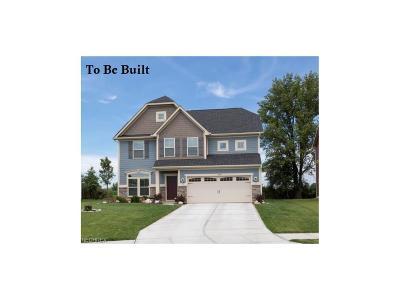 North Ridgeville Single Family Home For Sale: 9280 Nash Ln