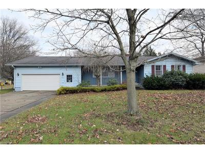 Youngstown Single Family Home For Sale: 3115 Goleta Ave