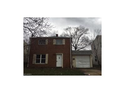 Euclid Single Family Home For Sale: 21250 Priday