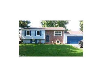 Warren Single Family Home For Sale: 5397 Kuszmaul Ave Northwest