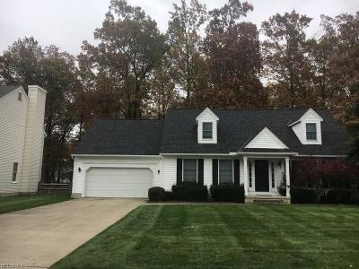 Avon, Avon Lake Single Family Home For Sale: 147 Highland Ave