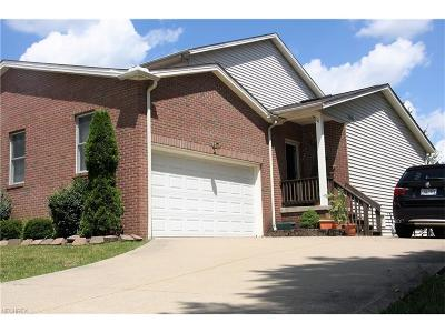 Brecksville, Broadview Heights Single Family Home For Sale: 360 Lazzaro Blvd