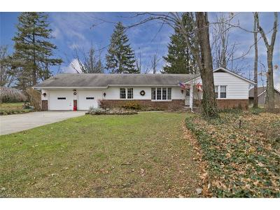 Lake County Single Family Home For Sale: 38305 Berkshire Hills Dr