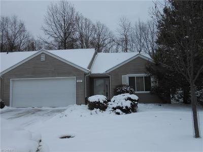 Strongsville Single Family Home For Sale: 10507 Leawood Oval