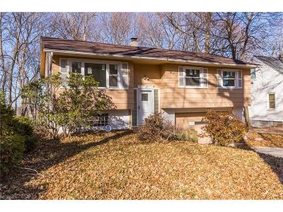 Euclid Single Family Home For Sale: 19080 Genesee Rd