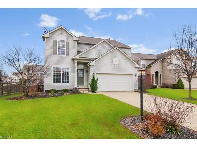 Single Family Home For Sale: 9720 Sunray Dr