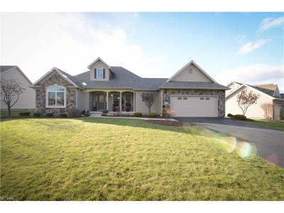 Canfield Single Family Home For Sale: 4196 Nicolina Way
