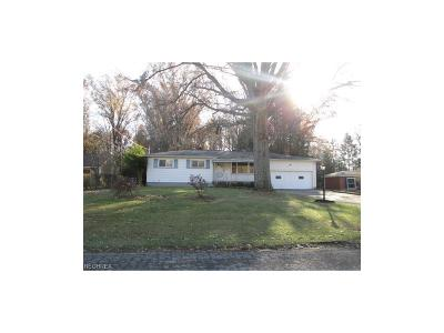 Youngstown Single Family Home For Sale: 811 Kiwana Dr