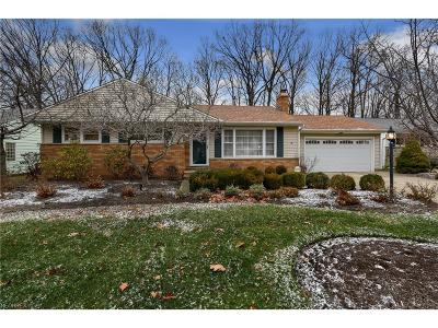 Wickliffe Single Family Home For Sale: 30161 Meadowbrook Dr