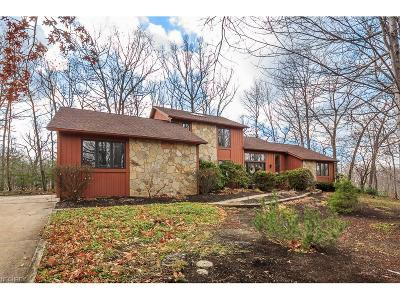 Concord Single Family Home For Sale: 7290 Pinehill Rd