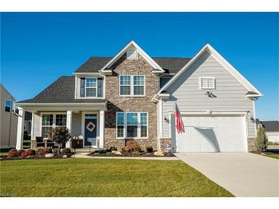 Wadsworth Single Family Home For Sale: 1492 Brentfield Dr