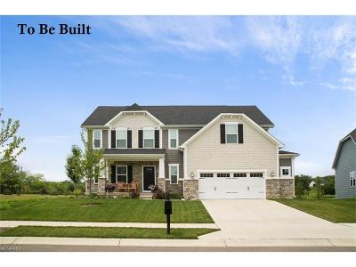 North Ridgeville Single Family Home For Sale: 26638 Stockport Mill Dr