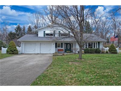 Lake County Single Family Home For Sale: 79 Melrose Dr