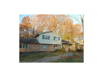Brecksville, Broadview Heights Single Family Home For Sale: 4275 Canterbuy Ln