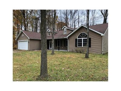 Ashtabula County Single Family Home For Sale: 517 Rome Rock Creek Rd
