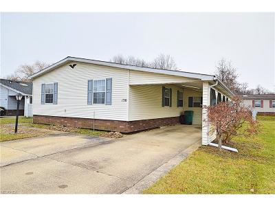 Geauga County Single Family Home For Sale: 130 Highland Dr