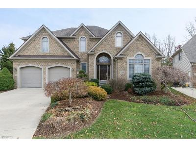Avon, Avon Lake Single Family Home For Sale: 33605 St. Francis Dr