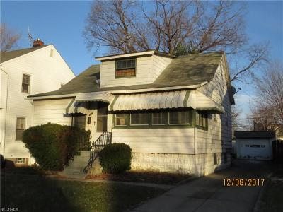 Euclid Single Family Home For Sale: 235 East 246th St