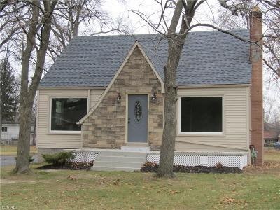 Youngstown Single Family Home For Sale: 4452 Fitzgerald Ave