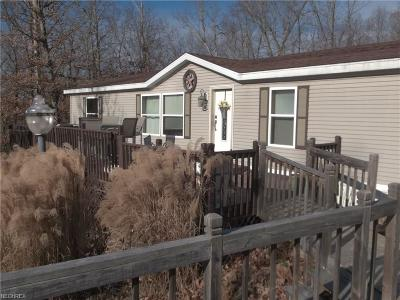 Guernsey County Single Family Home For Sale: 8943 Pioneer Rd