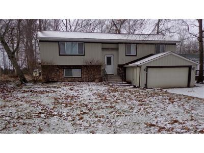 Brunswick Single Family Home For Sale: 720 Maplewood Ave