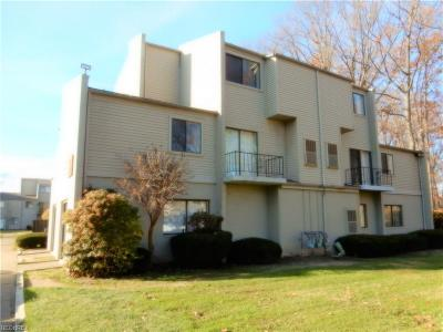 Willoughby Condo/Townhouse For Sale: 38365 North Ln #G-207