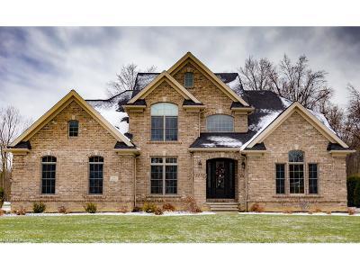 Avon, Avon Lake Single Family Home For Sale: 556 Long Cv