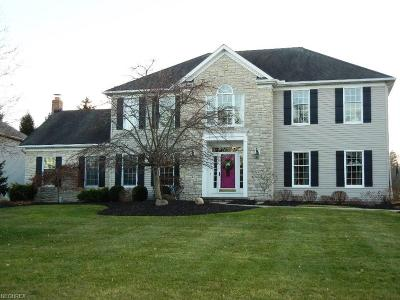 Brecksville, Broadview Heights Single Family Home For Sale: 6990 Crystal Creek Dr