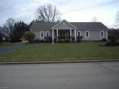 Canfield Single Family Home For Sale: 3475 Winners Cir
