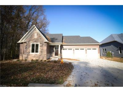 Canfield Single Family Home For Sale: 6842 Strawberry Fields