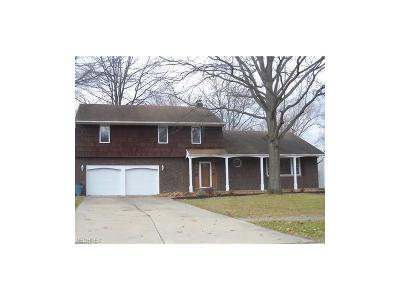 Strongsville Single Family Home For Sale: 20684 Chestnut Dr