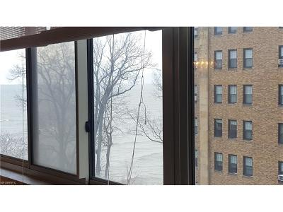 Bay Village, Cleveland, Lakewood, Rocky River, Avon Lake Condo/Townhouse For Sale: 12520 Edgewater Dr #709