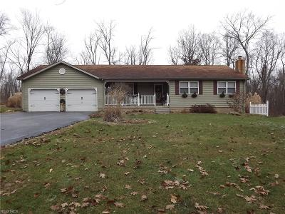 Muskingum County Single Family Home For Sale: 3851 Hemmers Ln