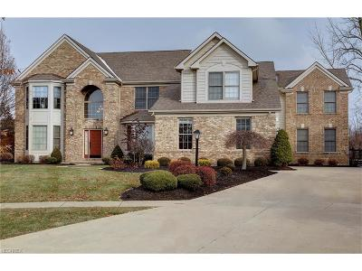Strongsville Single Family Home For Sale: 20366 Tramore Ln
