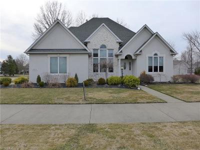 Avon, Avon Lake Single Family Home For Sale: 33646 Saint Francis Dr