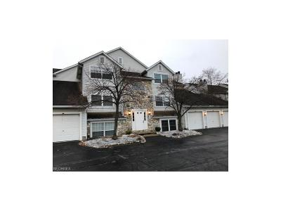 Westlake Condo/Townhouse For Sale: 28180 Detroit Rd #A1